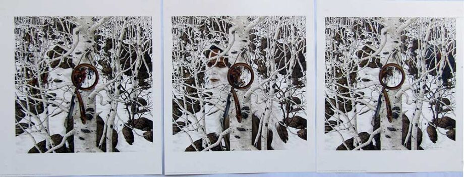 Two More Indian Horses by Bev Doolittle a limited edition Triptych