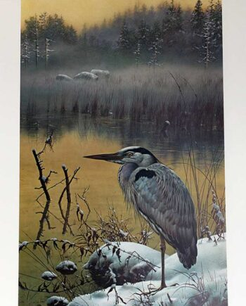 Carl Brenders limited edition print of the Great Blue Heron Late Snow