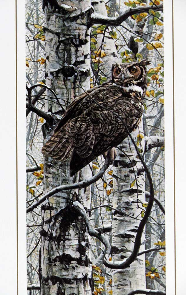 Great Horned Owl by Rod Fredericks a limited edition art print