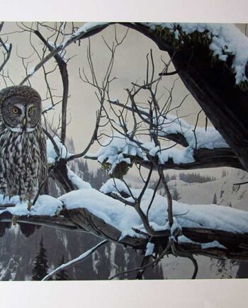 Shadows of Dusk by Rod Fredericks a limited edition art print of Owls