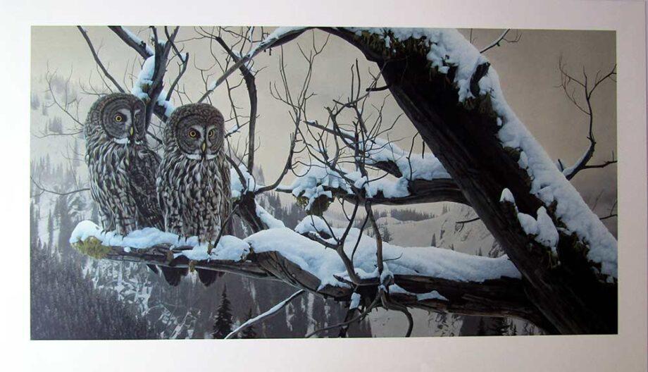 Shadows of Dusk by Rod Fredericks a limited edition art print of Owls