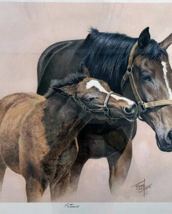 Fred Stone Thoroughbred Artist - limited edition art print Patience
