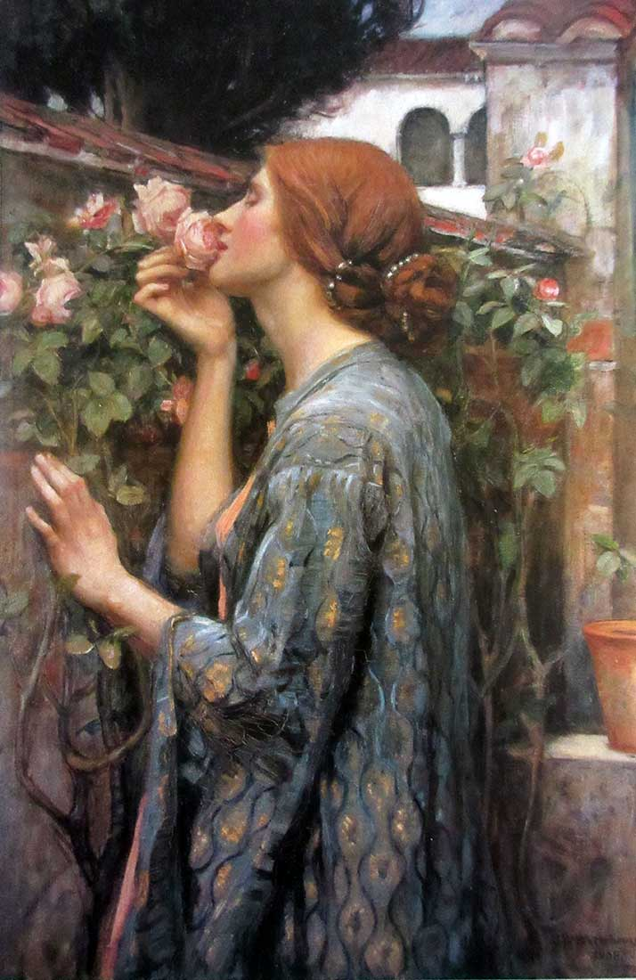 John William Waterhouse - artist - lithographic print - My Sweet Rose