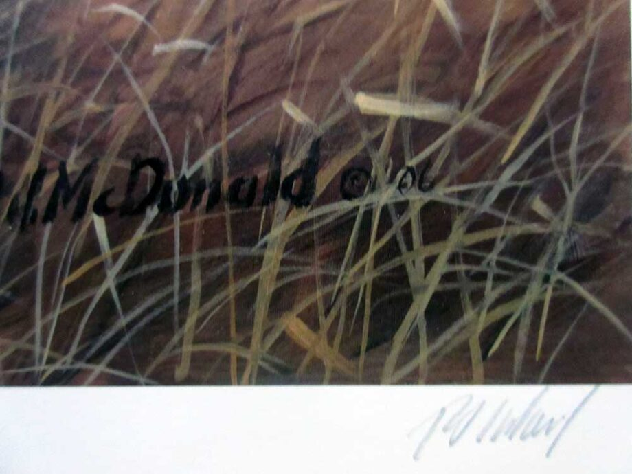 R.J. MacDonald noted artist - limited edition lithographic print titled Just Us