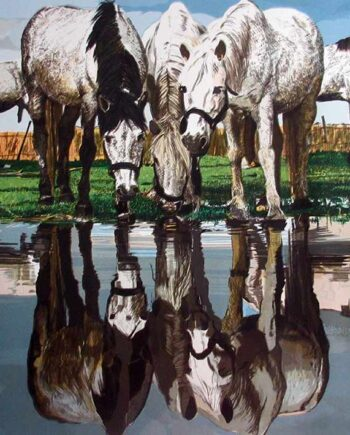 Horses of the Camargue a limited edition lithograph print on paper by Fran Bull