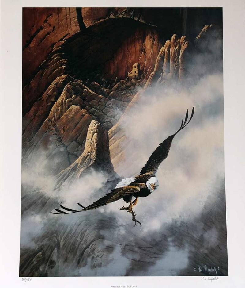 Ted Blaylock Anasazi Nest Builder I